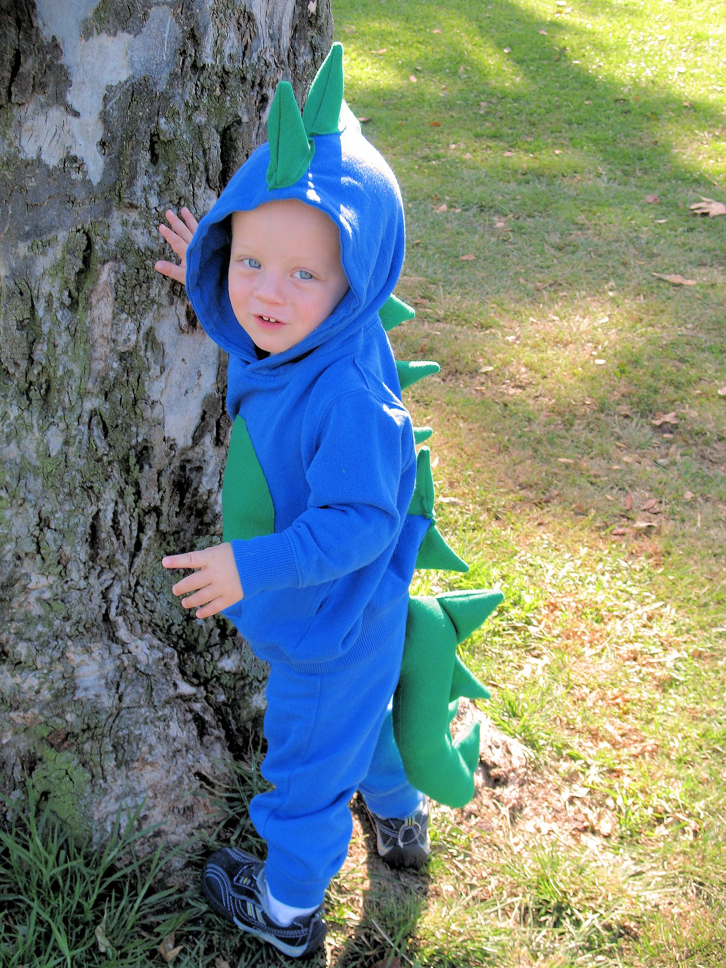 Crazy Little Projects Dinosaur Costume Crazy Little Projects