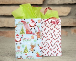 Tiny Small Gift Bags