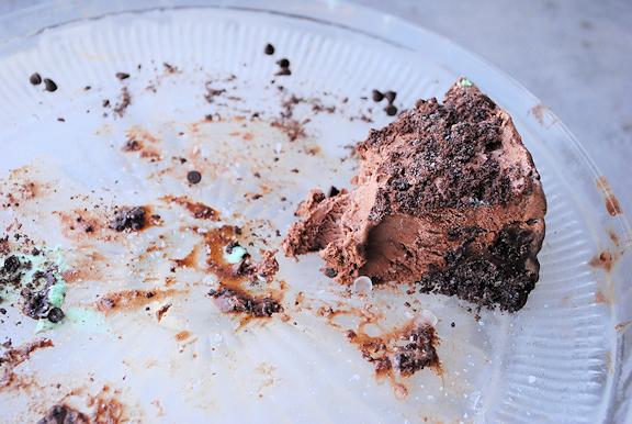 Mint chocolate chip ice cream cake recipe