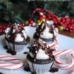 Mini Candy Cane Cupcakes with Chocolate Ganache