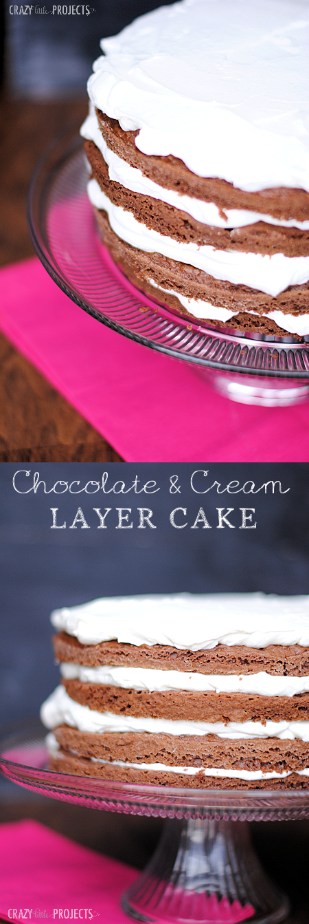 Chocolate and Cream Cake-Easy to make and tastes great!