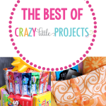 Favorites from Crazy Little Projects