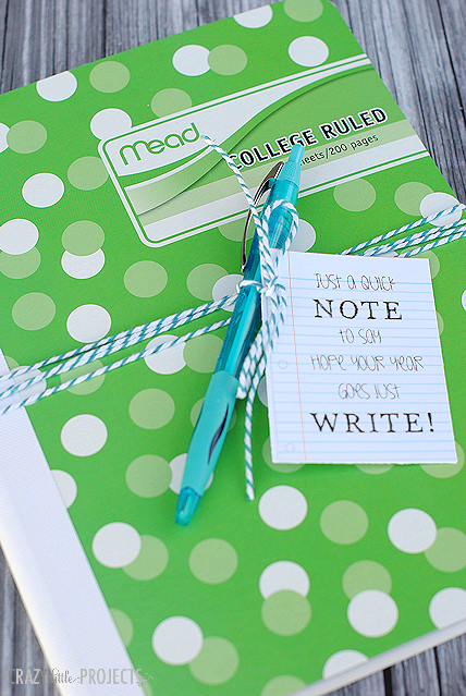 Back to School Notebook and Pen Gift Idea