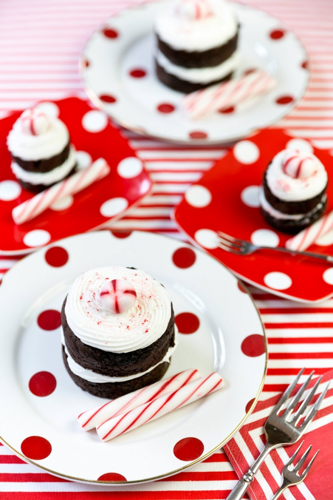 Peppermint-Chocolate-Mini-Cakes_1