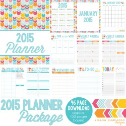 2015-Daily-Planner-All-Download-Graphic-SQUARE-250x250