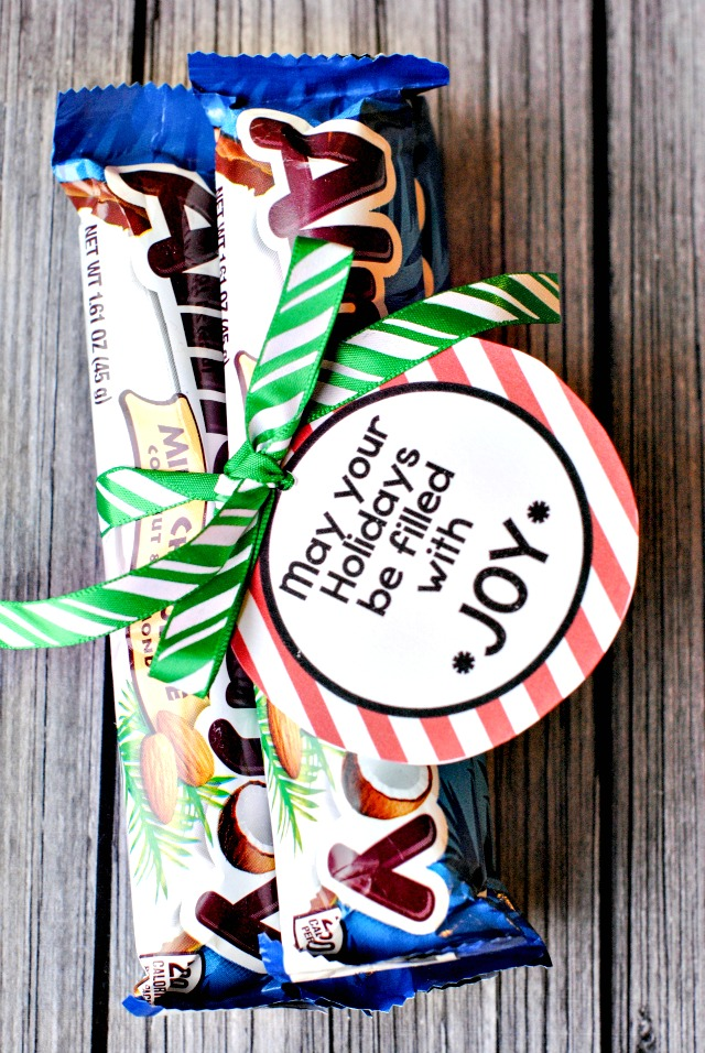 Easy Almond Joy Christmas Gift Idea and Free Printable Tag