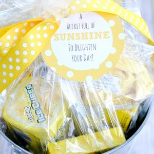 Bucket Full of Sunshine Gift Idea