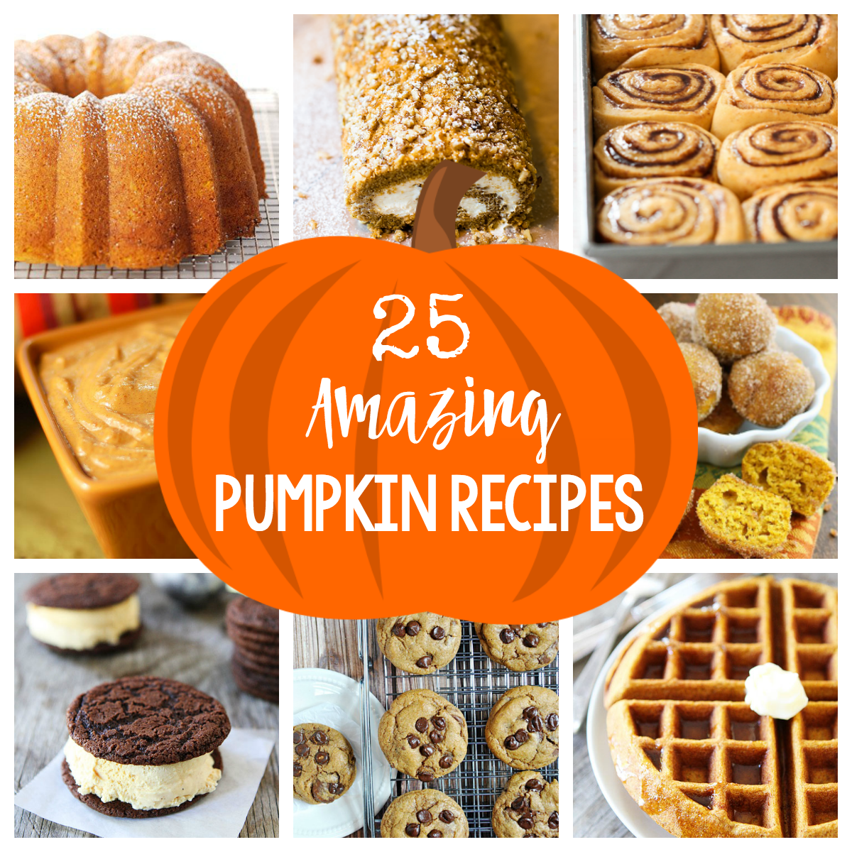 Best Pumpkin Recipes-You will love baking these amazing pumpkin recipes this Fall.