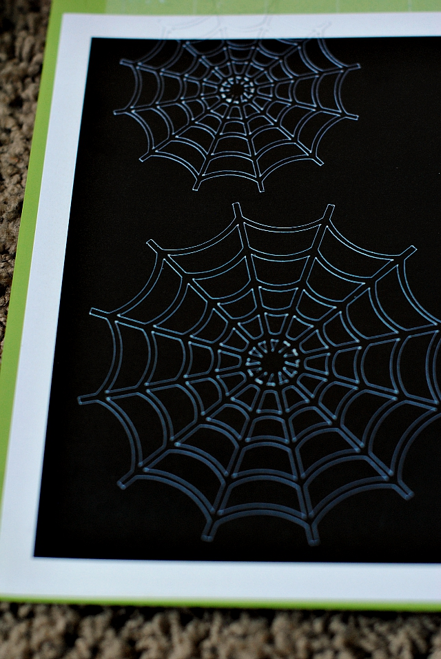 MINCSpiderwebs