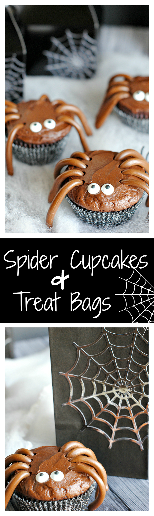 Cute & Easy Spider Cupcakes and Spider Web Treat Boxes