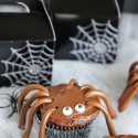 Spider Cupcakes and Spiderweb Treat Bags