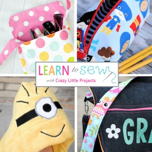 Learn to Sew with Crazy Little Projects