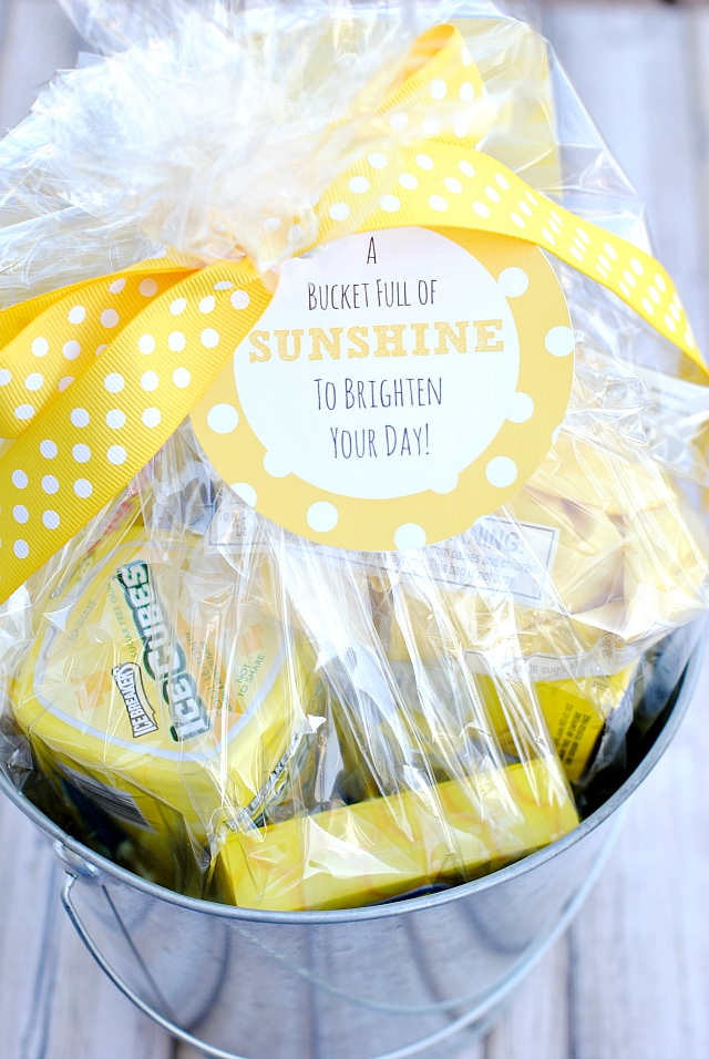 Bucket Full of Sunshine Cheer Up Gifts