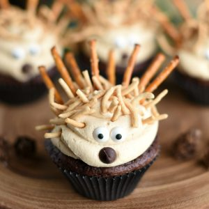 Cute Animal Cupcakes: Porcupines
