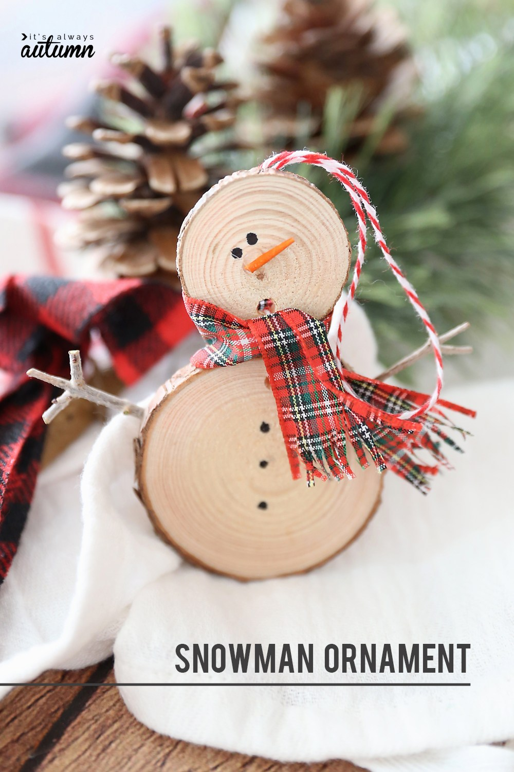 20 Easy Christmas Crafts for All Ages   Crazy Little Projects