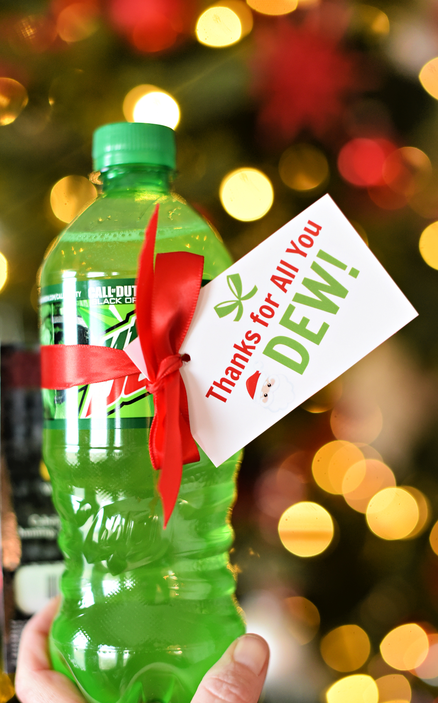 Thanks for All You DEW Holiday Teacher Gift